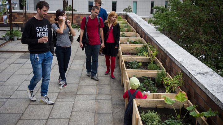 Prvá verejná strešná záhrada v meste  - POD PYRAMÍDOU Slovenského rozhlasu