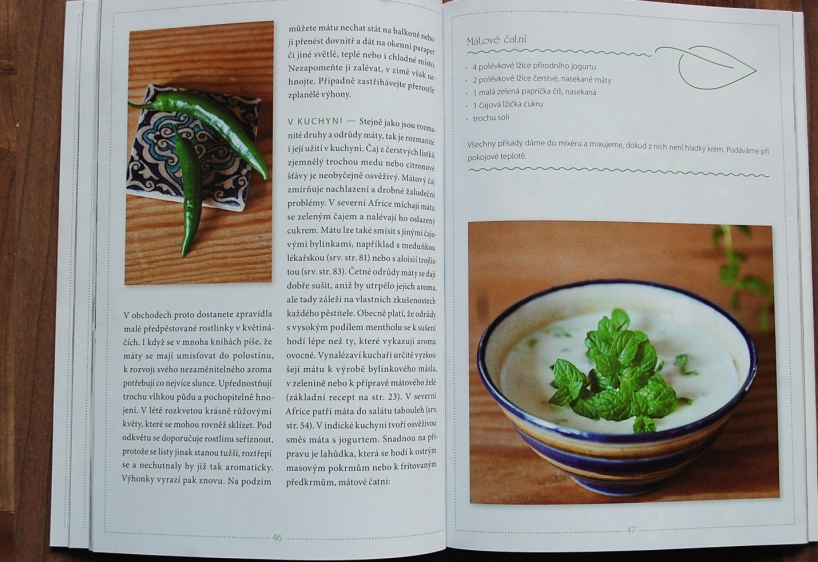 recepty s bylinkami